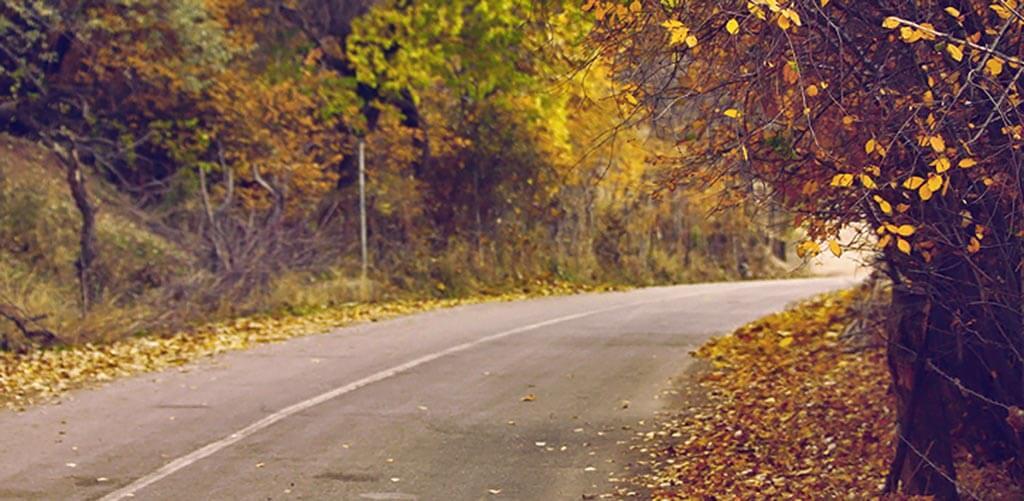 Edzés ősszel a szaadban