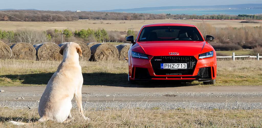Audi - teszt - férfimagazin