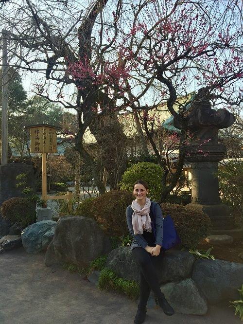 japan_utazas_gasztronomia