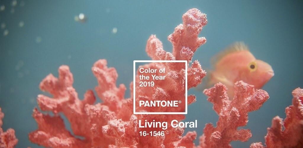 Pantone 2019 - év színe