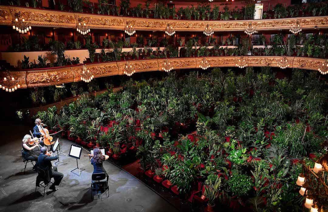 Barcelona - opera - növények
