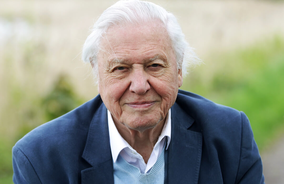 David attenborough instagram rekord