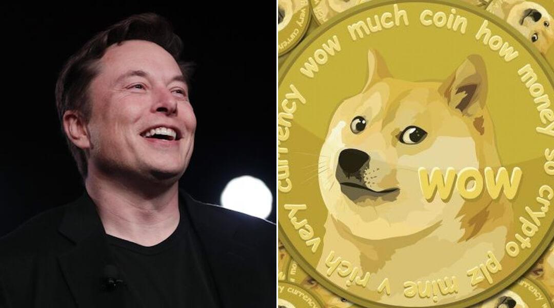 Elon Musk - Dogecoin